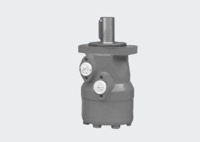 Hydraulic motor ALSG9